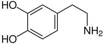 Dopamin (Wikimedia Commons)